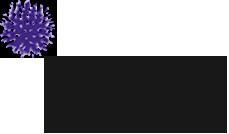 Echinops Garden Design