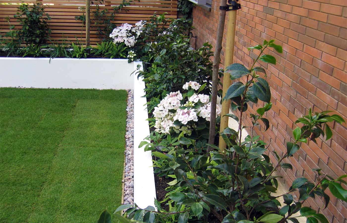 Green and white planting in a contemporary garden in Putney, London
