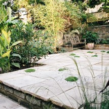 Sandstone, bamboo, ginger, pittosporum in North London garden