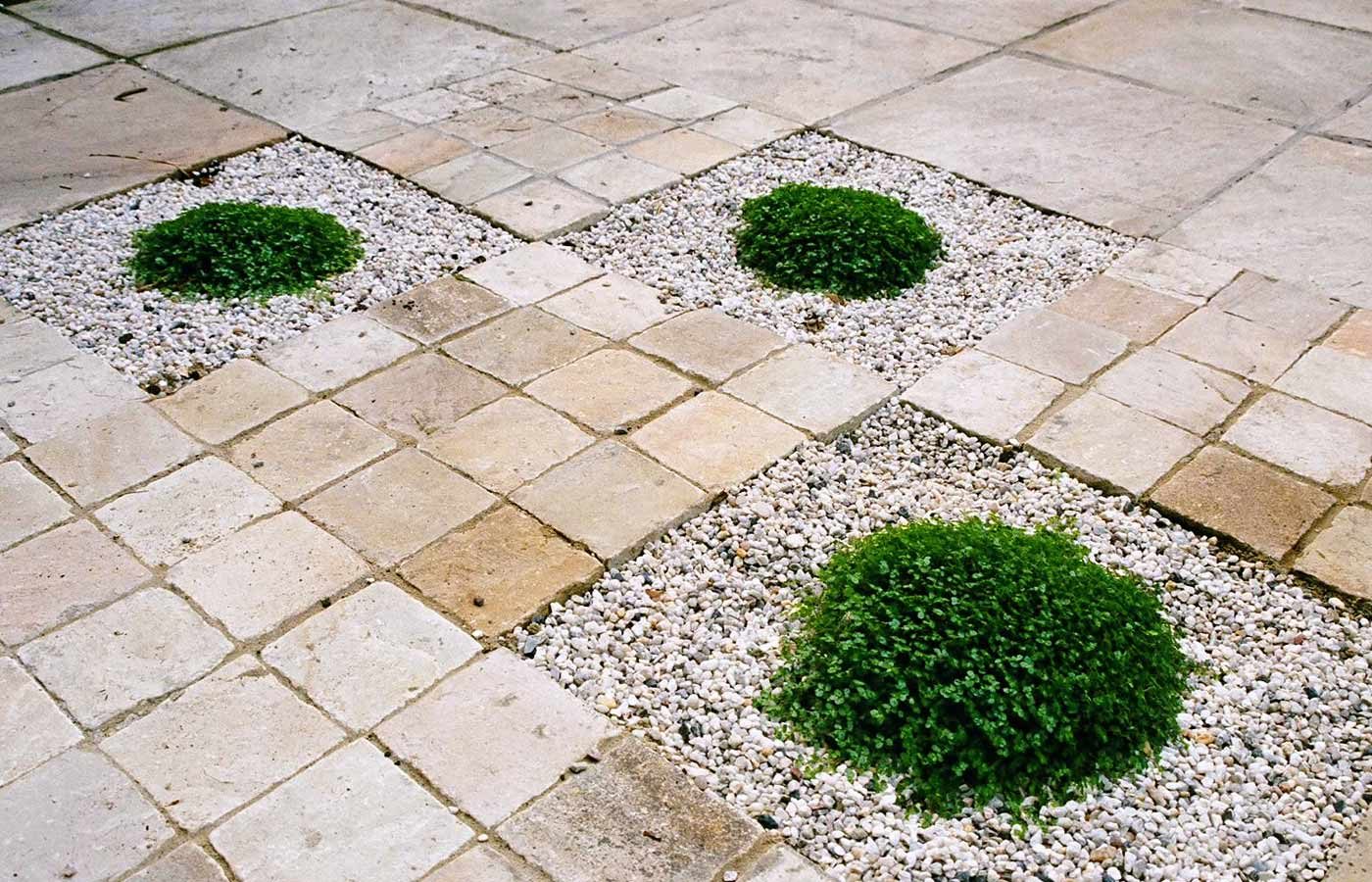 Sandstone setts, gravel greened with Soleirolia soleirolii