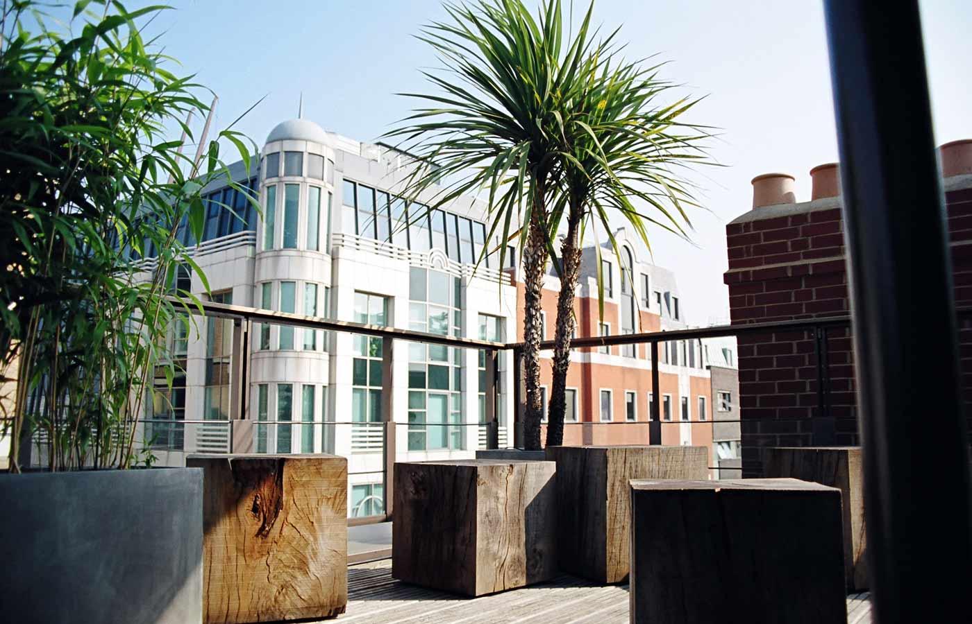 Roof garden design central london for Oak garden office