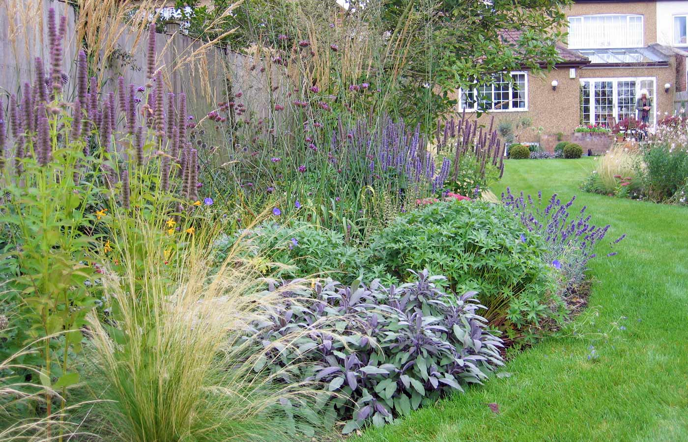Grasses and perennials in Surrey cottage garden