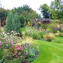 Cottage garden design with mixed border planting