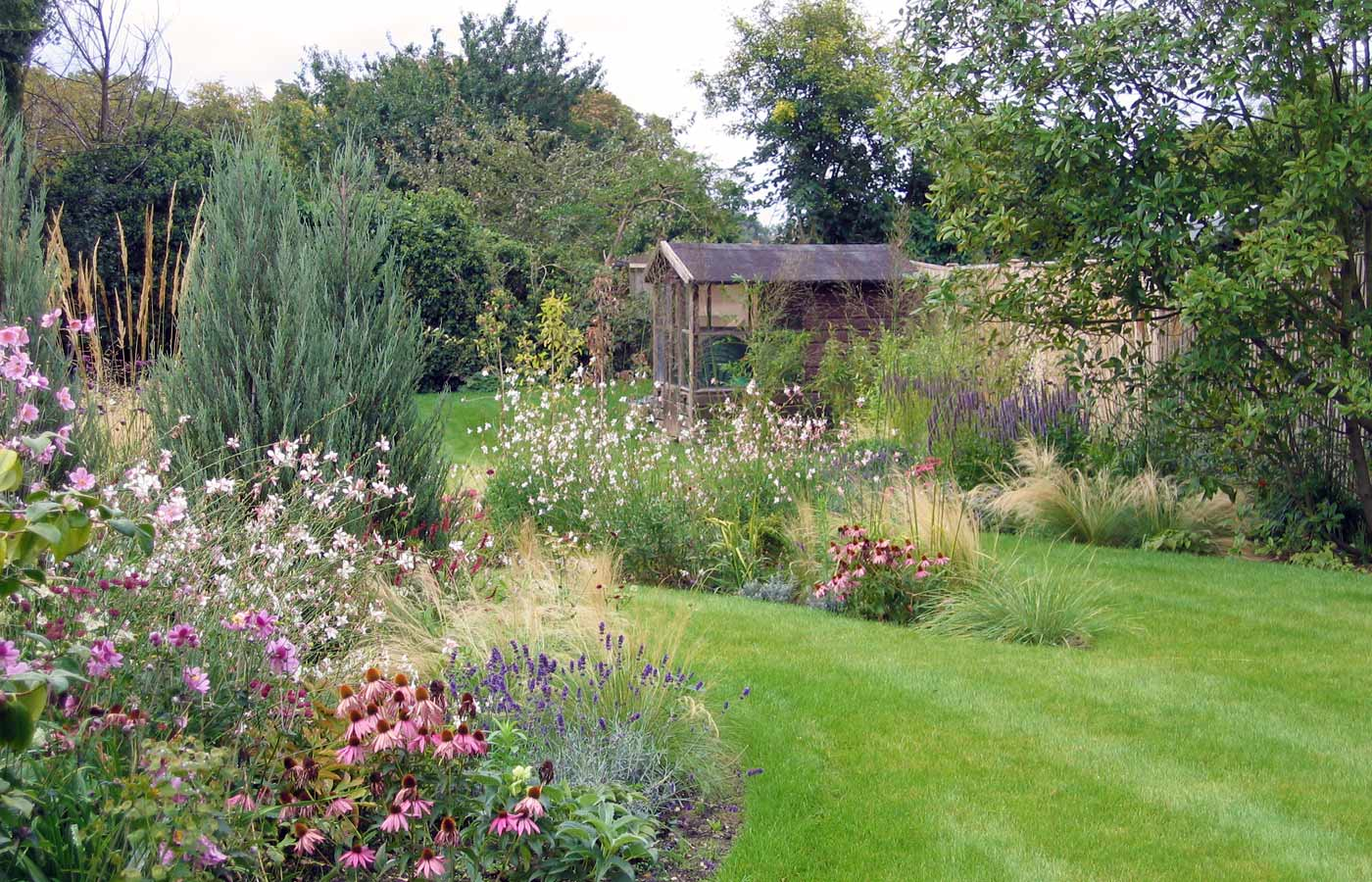 cottage garden design  garden design surrey, Natural flower
