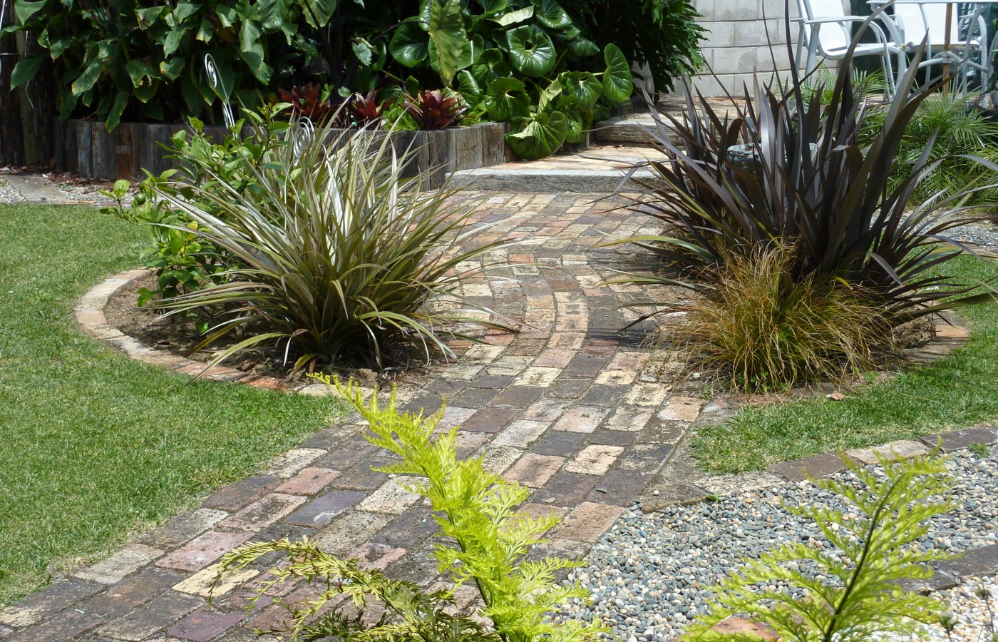New Zealand native plants, brick path