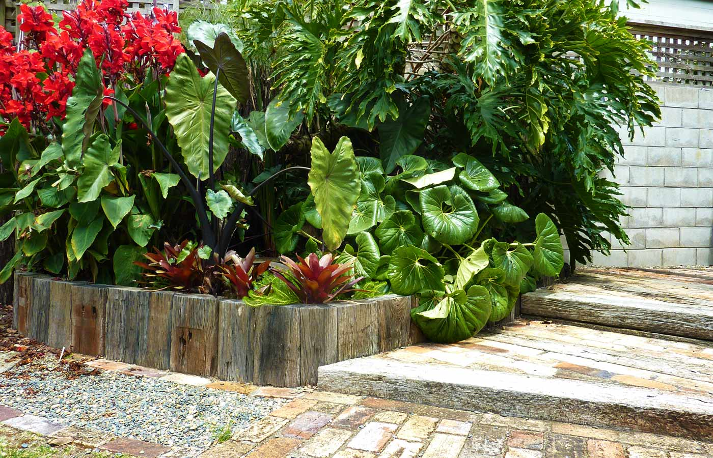Canna, colocasia, bromeliads and palms