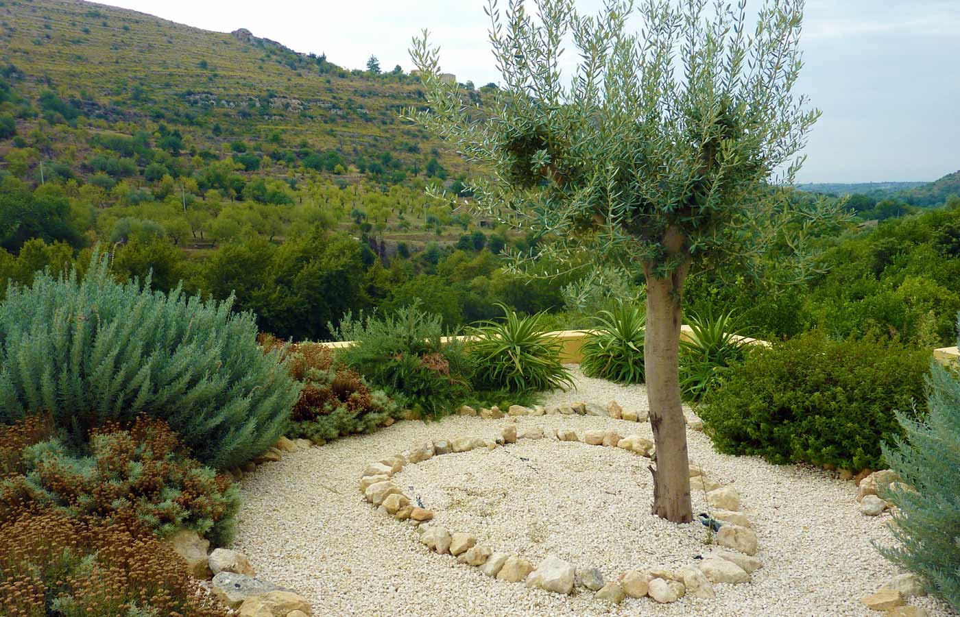 Mediterranean garden design for rural garden in sicily for Decoration jardin olivier