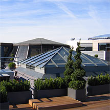 Commercial office roof terrace with box hedging