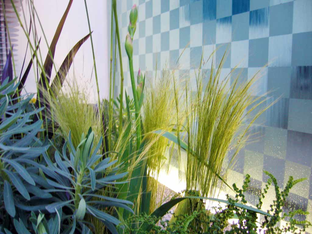 Planting at the foot of a water wall